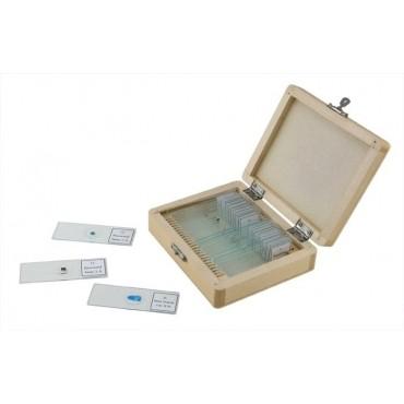 CELESTRON Caja de madera con 25 preparaciones variadas