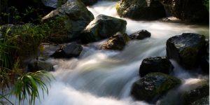 Efecto seda en una corriente de agua